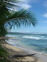 Caribbean Beaches, Costa Rica